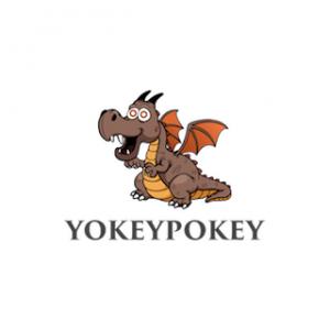 Yokey Pokey NYC Logo